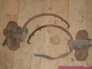 Материалы для изготовления когтей