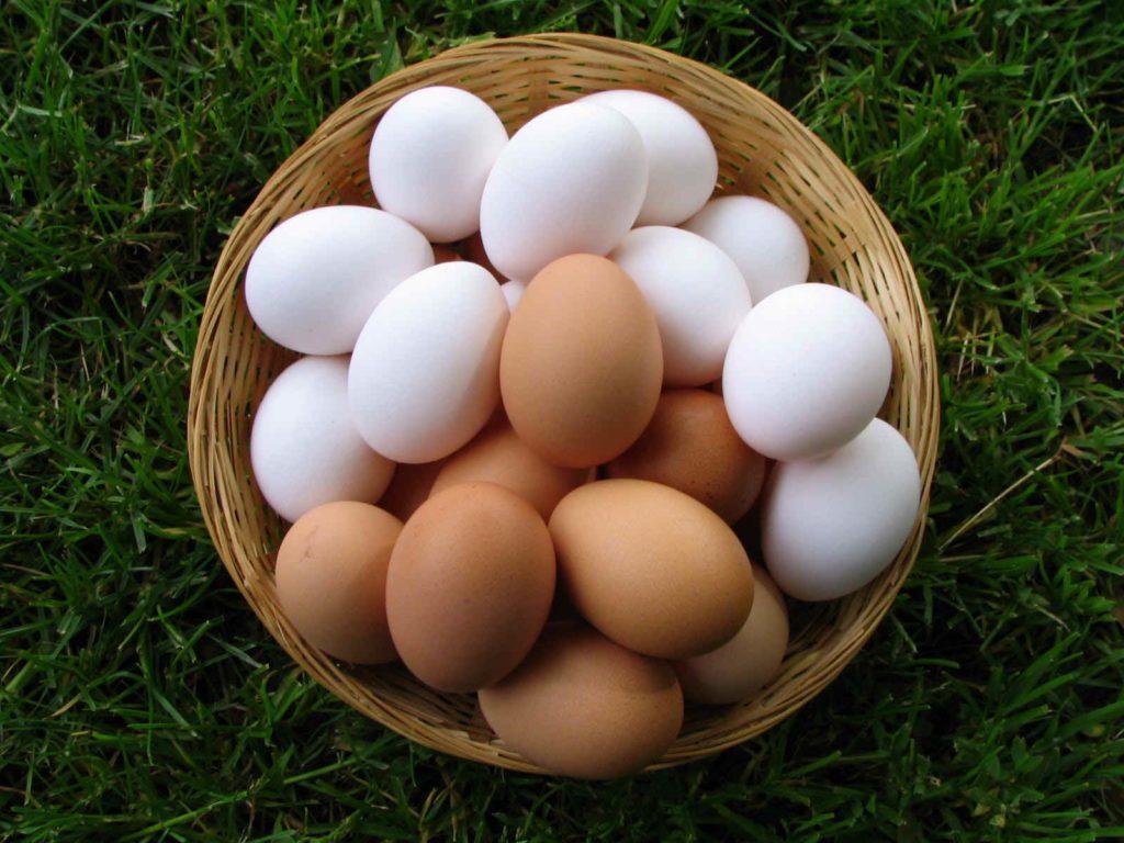 Тест на свежесть: 5 способов выявить протухшие яйца