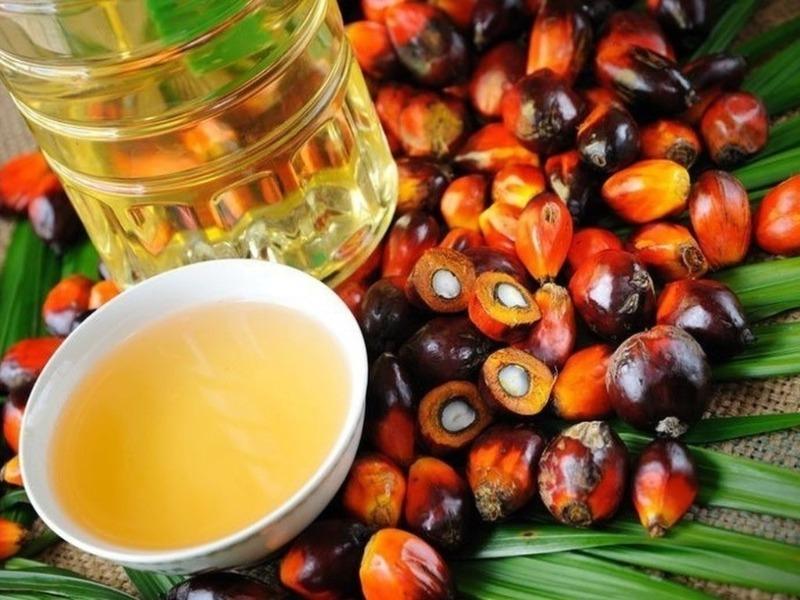 6 способов проверить продукты на содержание пальмового масла