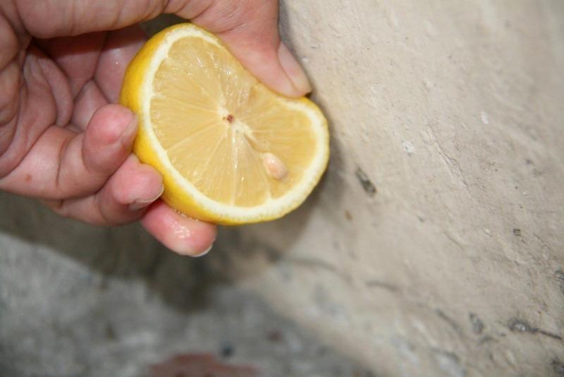 7 полезных свойств лимона, которые сберегут ваш бюджет и здоровье