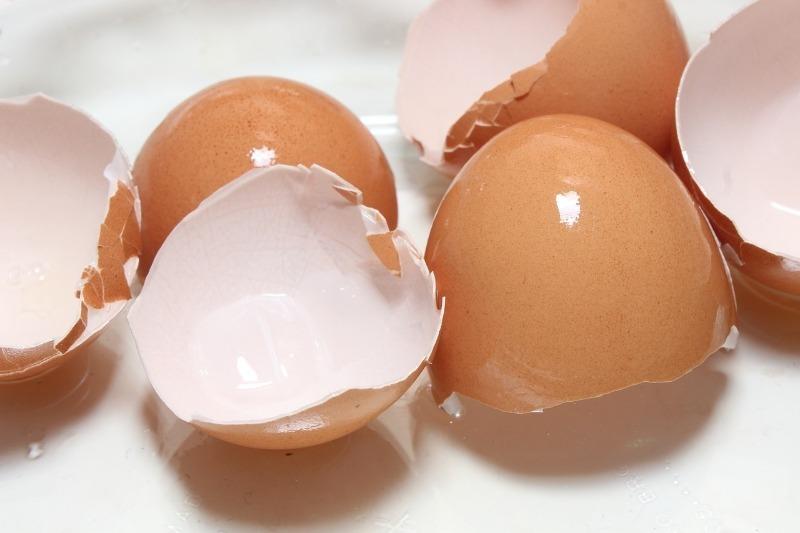 6 причин дать вторую жизнь яичной скорлупе, о которых знают не все