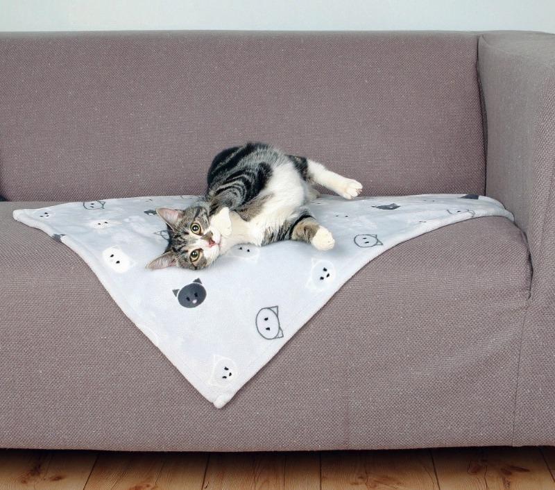 6 способов поддерживать чистоту дома, если у вас есть кот