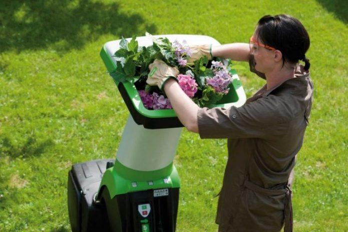 Женщина кладет ветки в садовый измельчитель